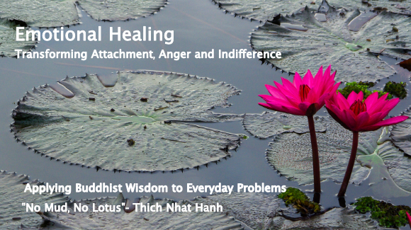 Emotional Healing Online Workshop