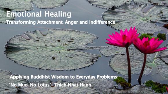 Emotional Healing Online Workshop